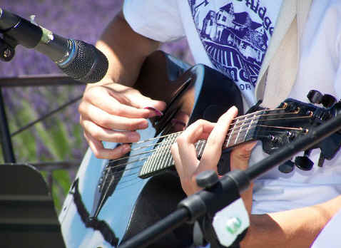 Brett Kane at Purple Ridge Lavender Festival