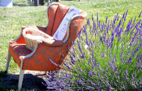 Vendor Chair at Purple Ridge Lavender Festival in Hermiston Oregon
