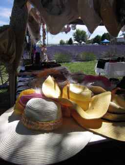 Vendors at Purple Ridge Lavender Hermiston Oregon