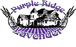 Purple Ridge Lavender